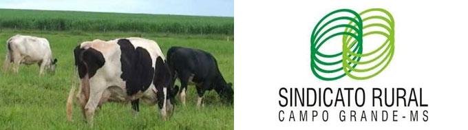 Sindicato Rural de Campo Grande MS